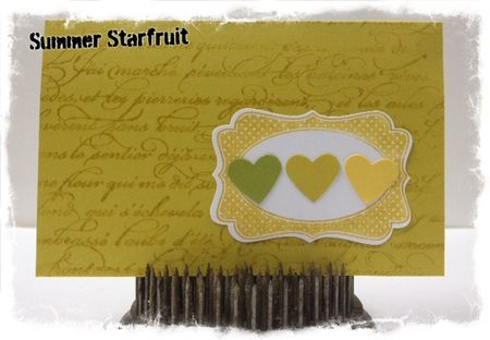 Stampin up 2012 2014 In Colors Summer Starfruit