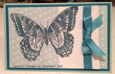 LynnC-swallowtail