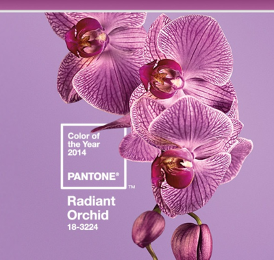 Pantone-radiant-orchid
