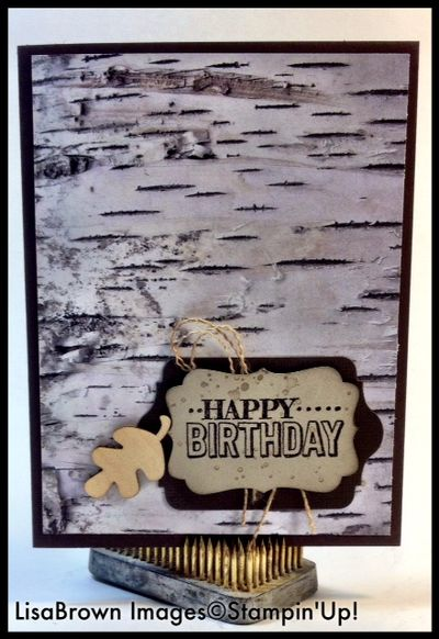 Stampin Up Adventure Bound Masculine Birthday Card Ink And