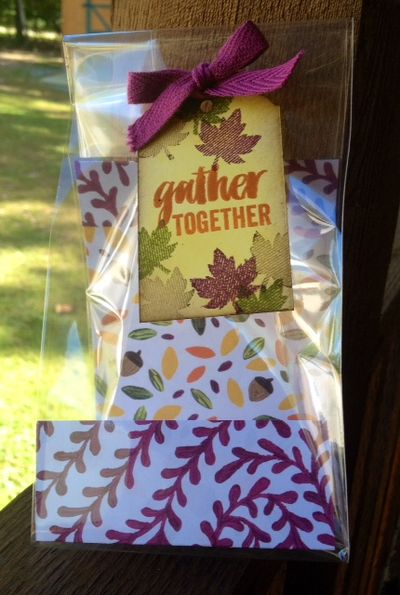 Stampin-up-seasonal-snapshot-fall-themed-treat-bag
