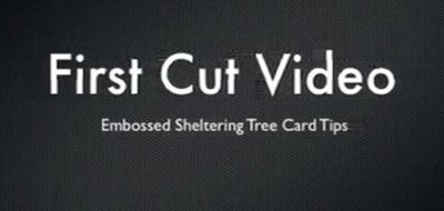 First-cut-sheltering-tree