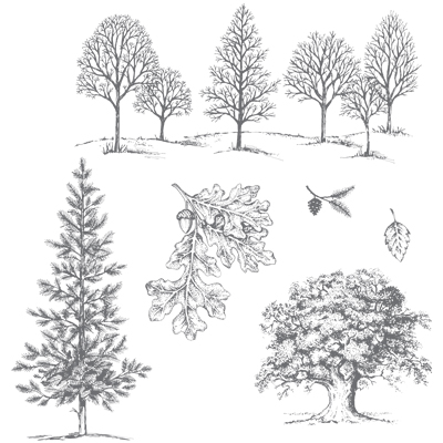 Lovely-as-a-tree-128655G