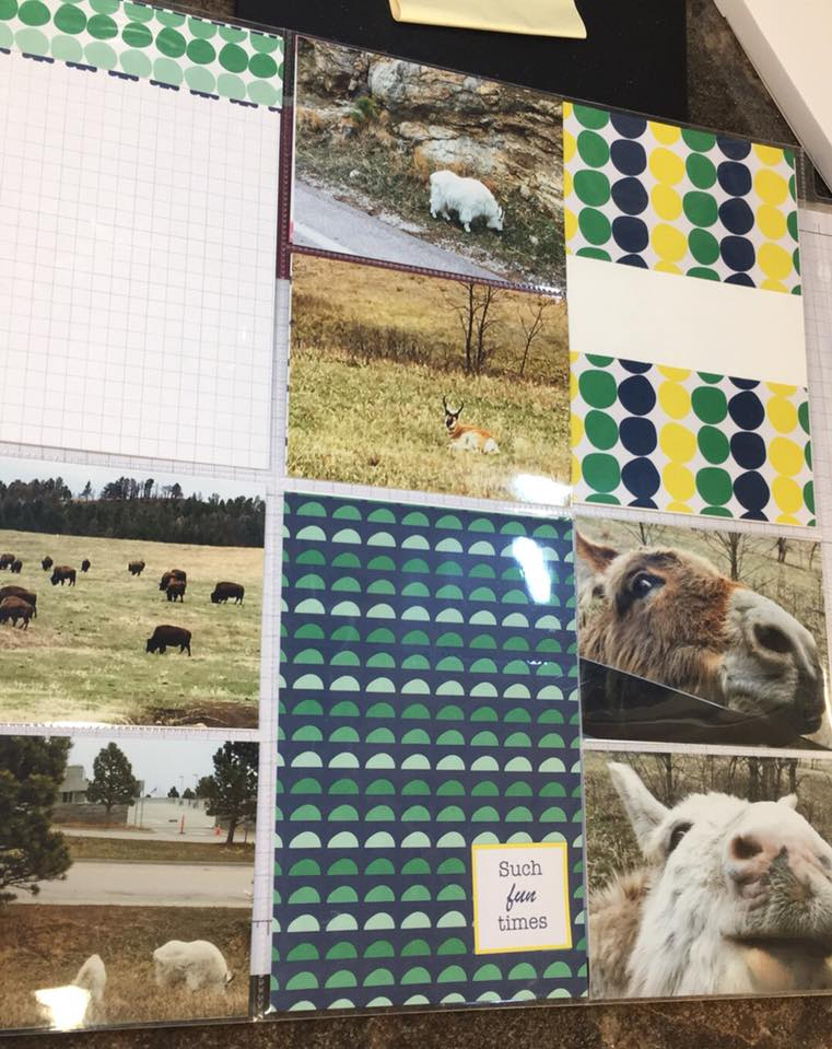 Scrapbooking-tip-animale