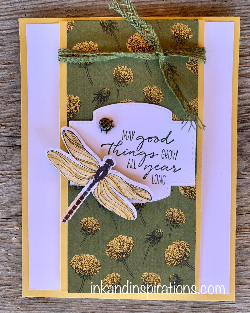 Stampin-up-fun-fold-dragonfly-garden-bundle