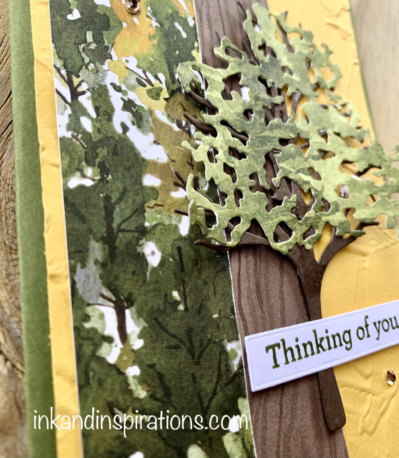 Using-patterned-paper-in-cardmaking